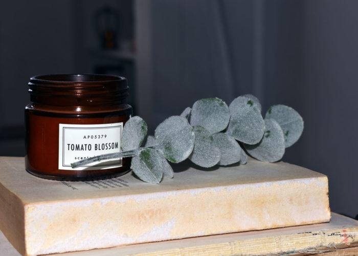 Minimalistische Deko mit Apotherflaschen und Kunstpflanzen