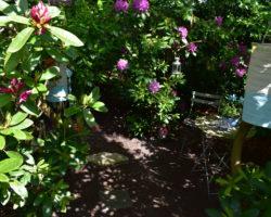 My secret garden – Der geheime Garten