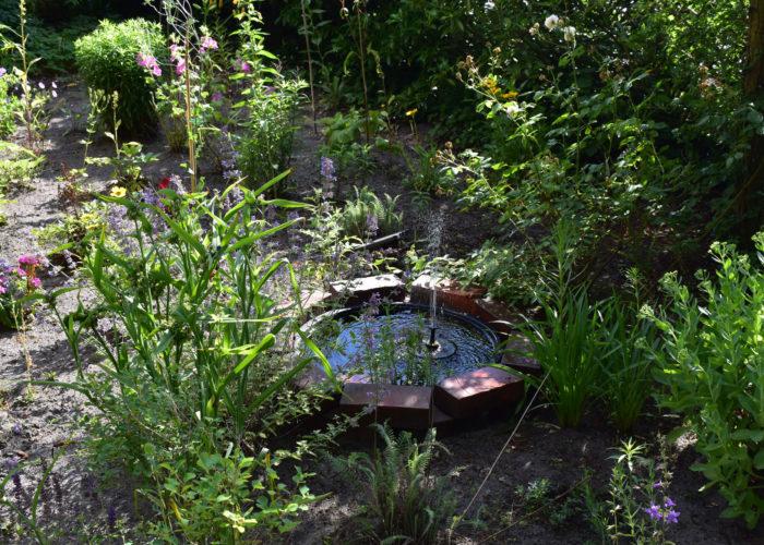 Gartentour Sommer 21 Teil 2